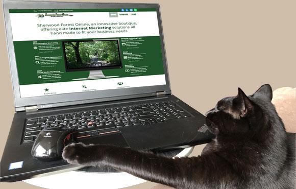 Sherwood-Forest-Online_Internet-Marketing_landing-page-development